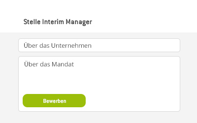 Prozess interim manager 2